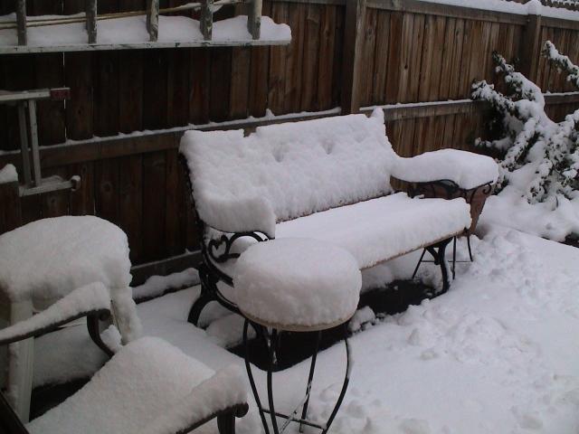snow-032907002.JPG